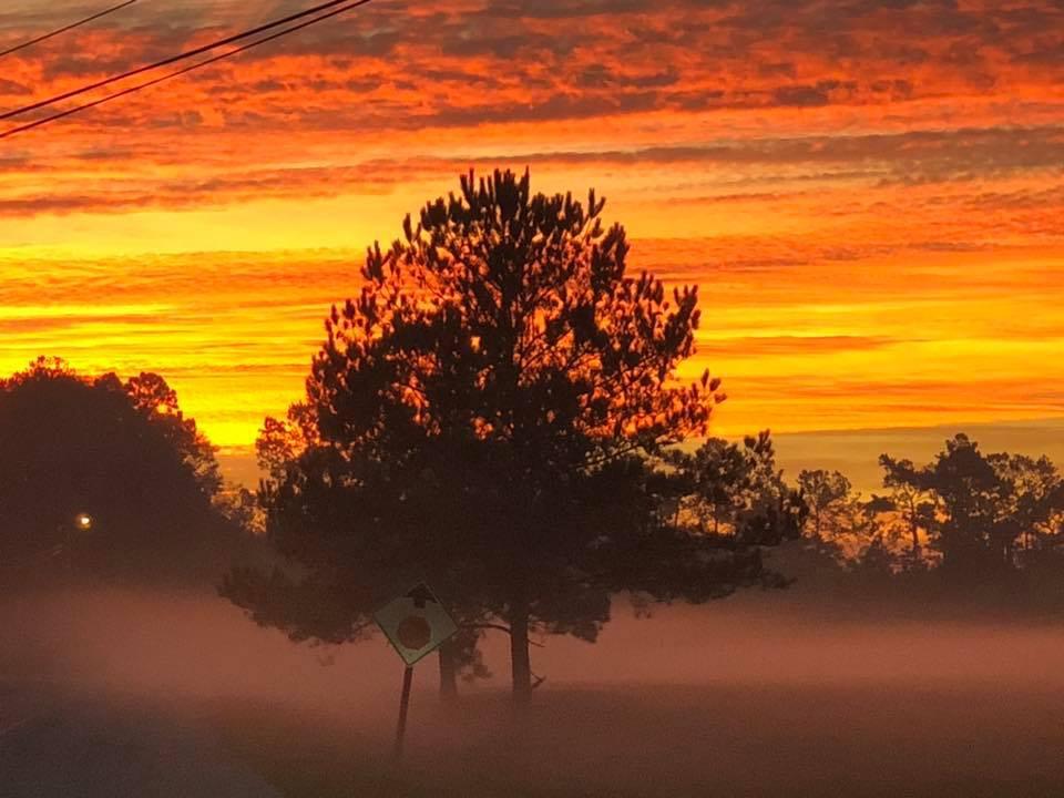 a fog.jpg