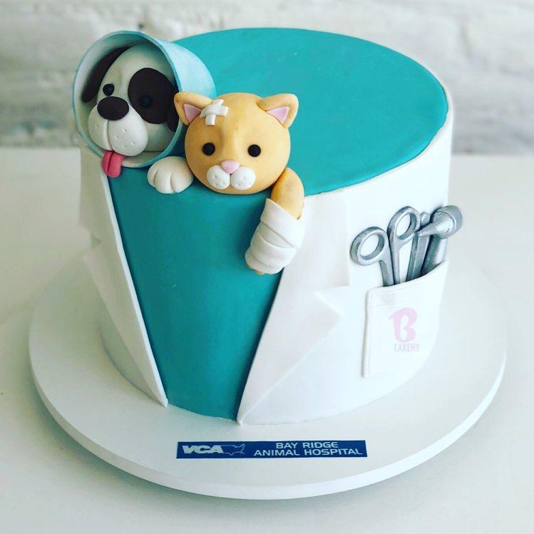 vet theme cake 1 tier