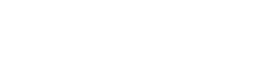 News12TheBronx_Logo_white.png