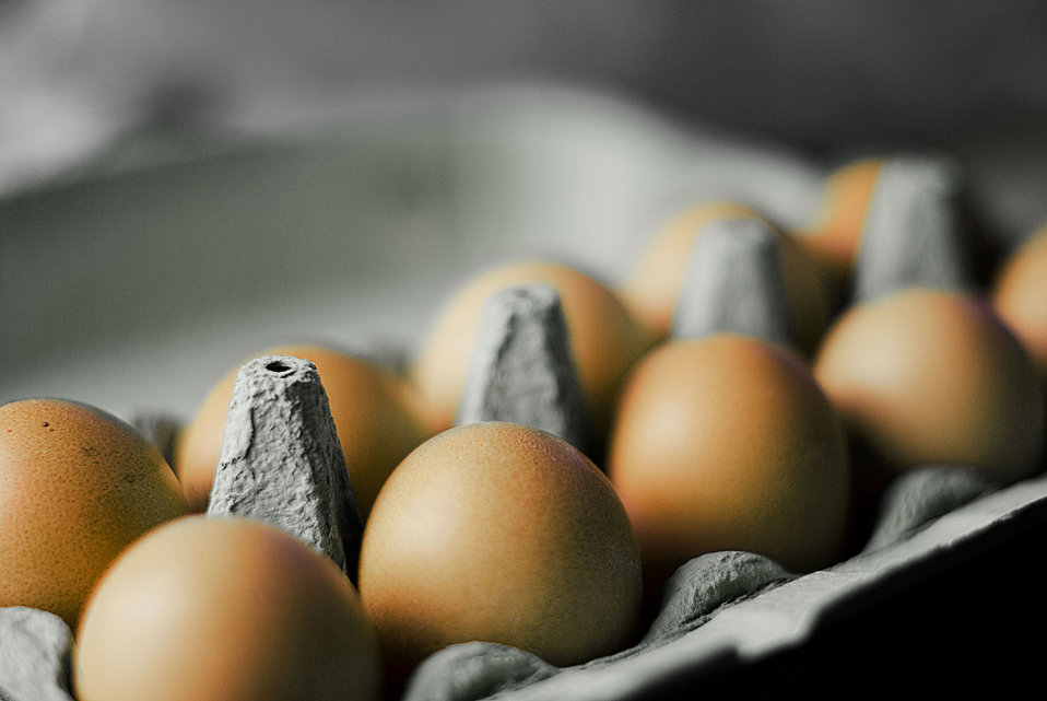 12 Things You Need to Know About Eggs Before Easter6.jpg