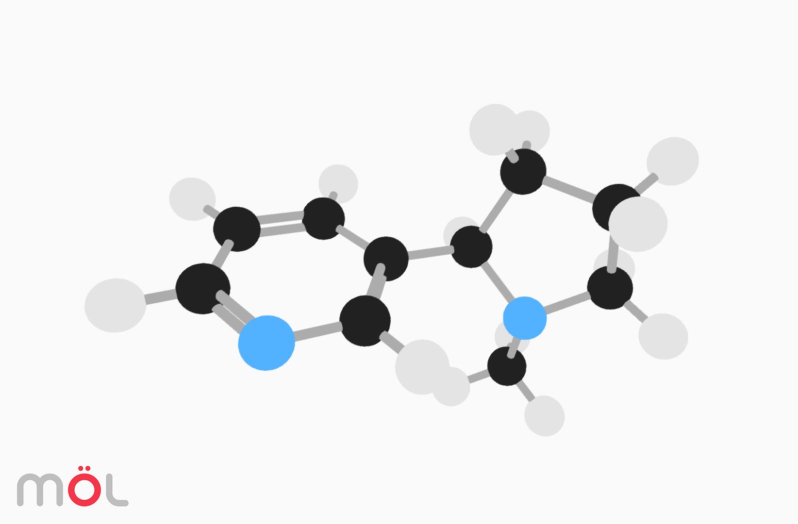 mol_molecule_viz_04.jpg