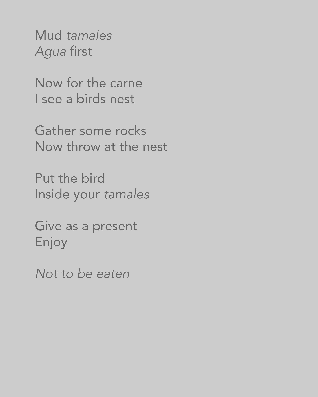 Our America Poem 8.jpg