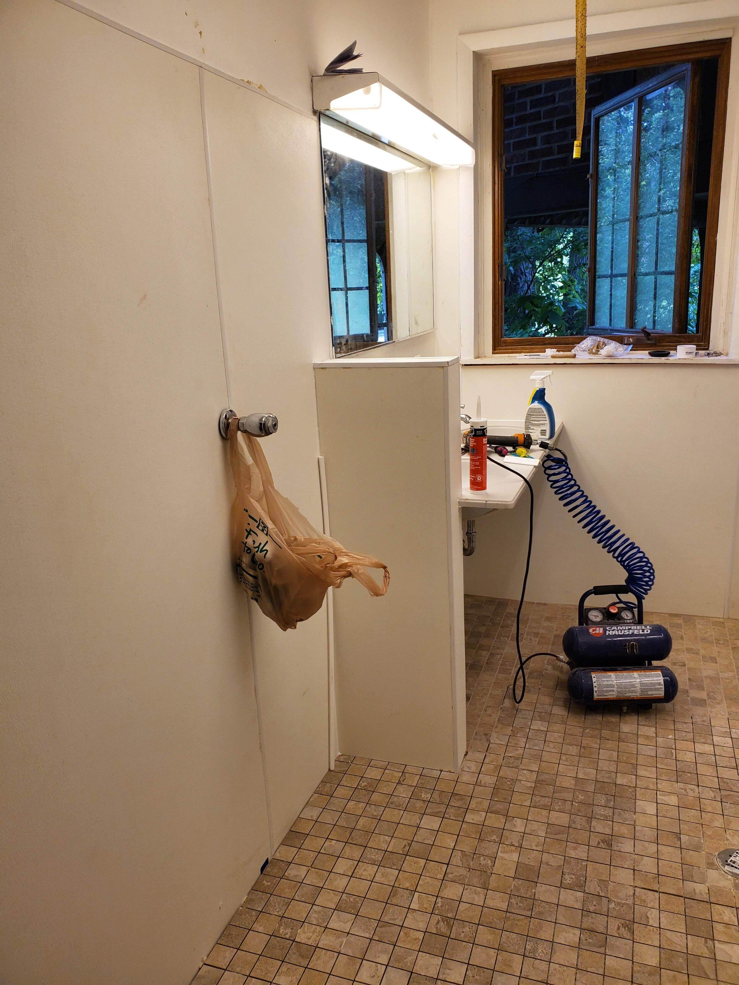 2019 First Floor Bathroom Renovation 20190815_104525.jpg