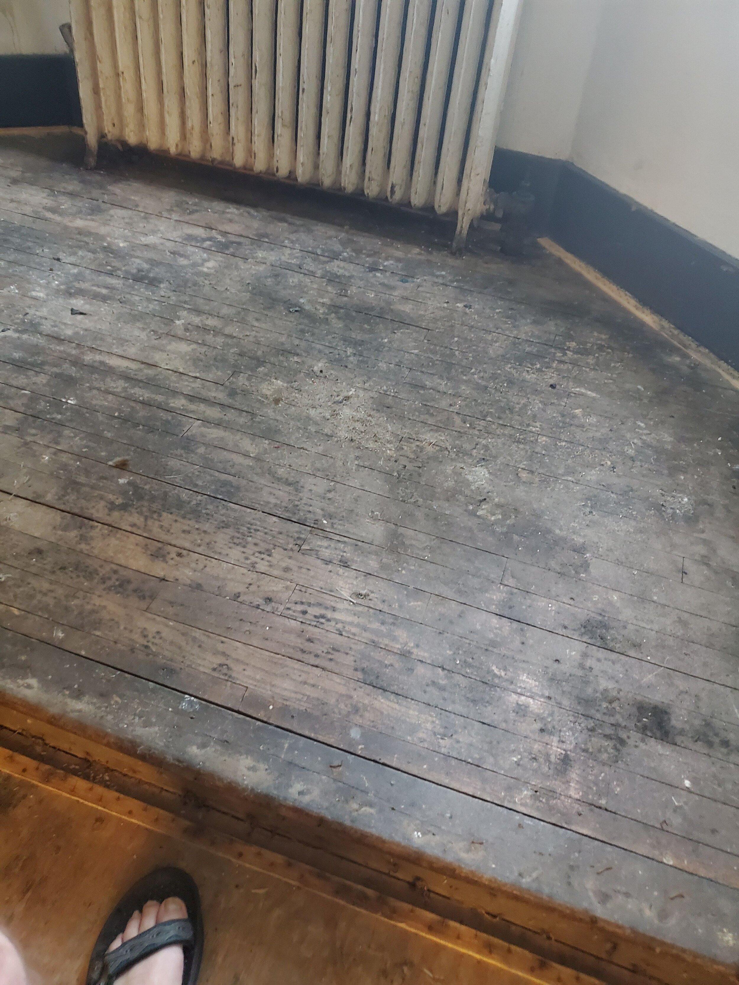 2019 First Floor Front Stair Renovation 20190806_133118.jpg
