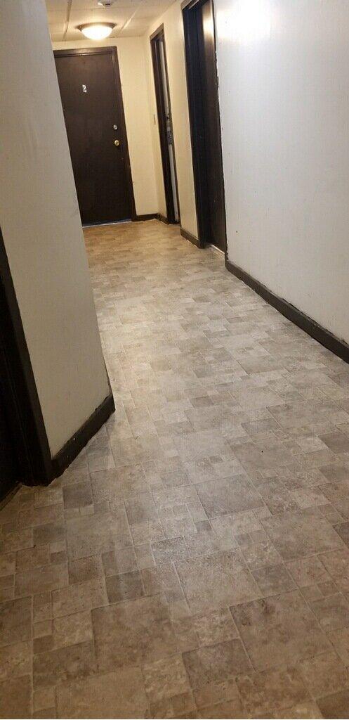 2019 First Floor Back Hallway Renovation 8226704111642643556.jpg