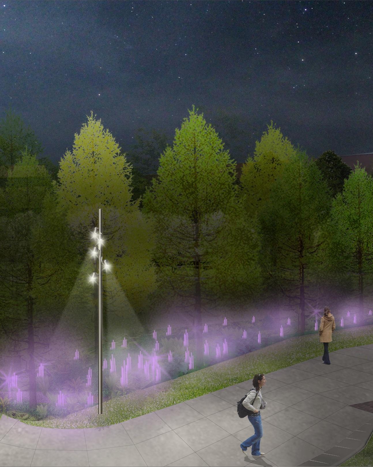 Infiltration+Garden_night_purple.jpg