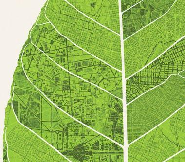 Nature and Cities.jpg