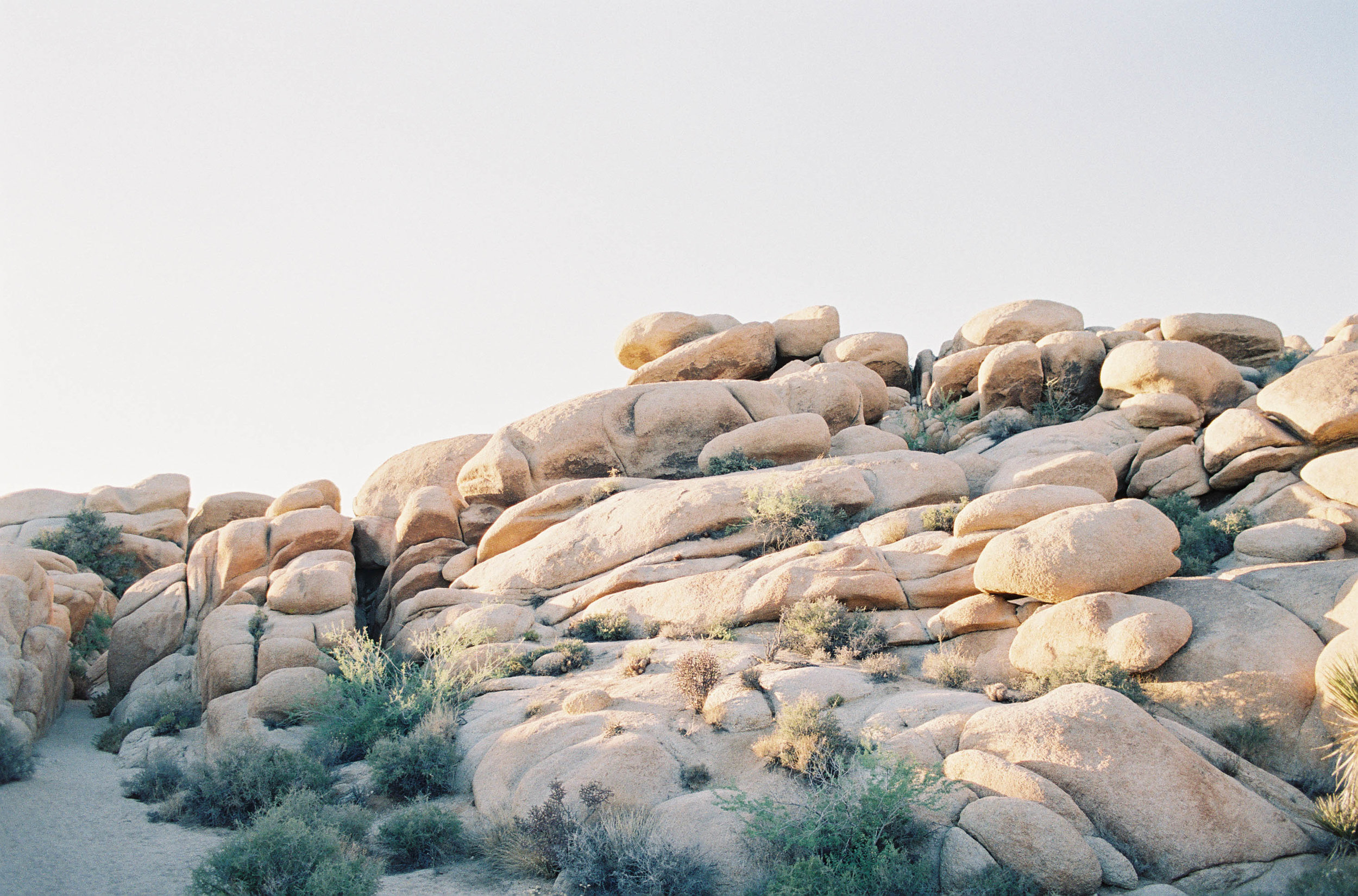 Airstream Camping in Joshua Tree — S B H