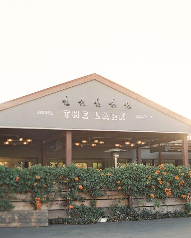 Tuesday night at the Lark to explore their delicious seasonal menu... #thelarksantabarbara #thelark #santabarbararestaurant #santabarbarafood #santabarbarafoodie #californiafoodie #santabarbaralife #funkzone #santabarbaradatenight