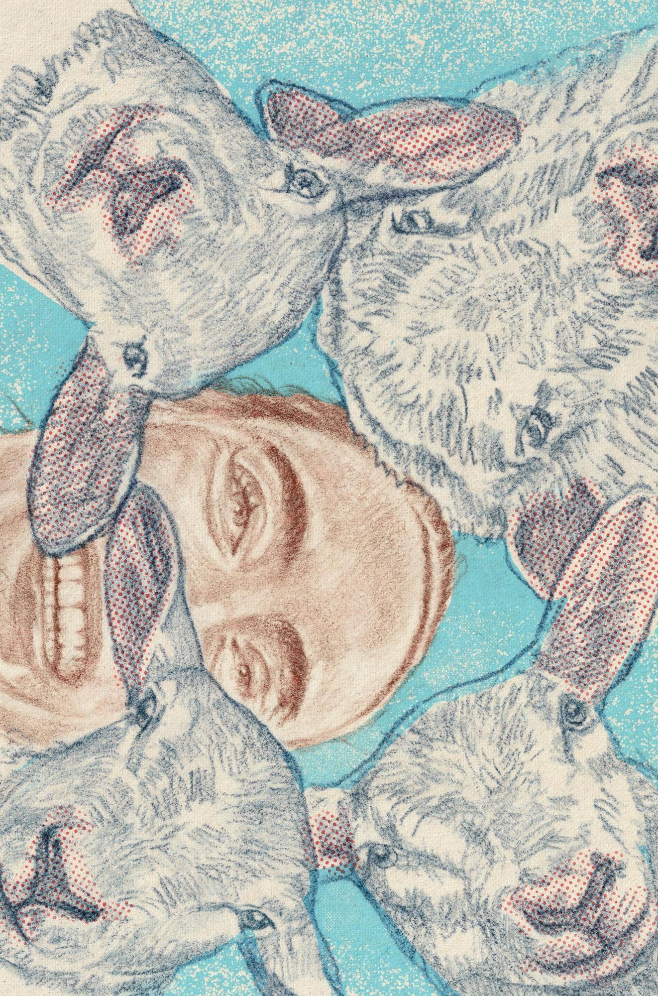 Kwispie's utopie - Scenarioschrijfster Anne Barnhoorn (36) verhuisde onlangs van de stad naar een piepklein dorp en schrijft daar deze zomer over. Deze week: als er eindelijk een lammetje over de dam is, overspoelt de kudde van boer Gert de tuin.