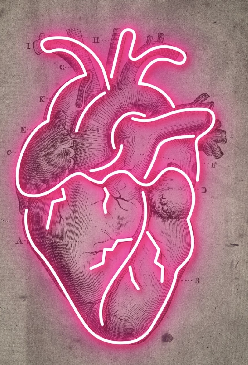 Neon Heart Vintage Diagram Print by @inkanddrop