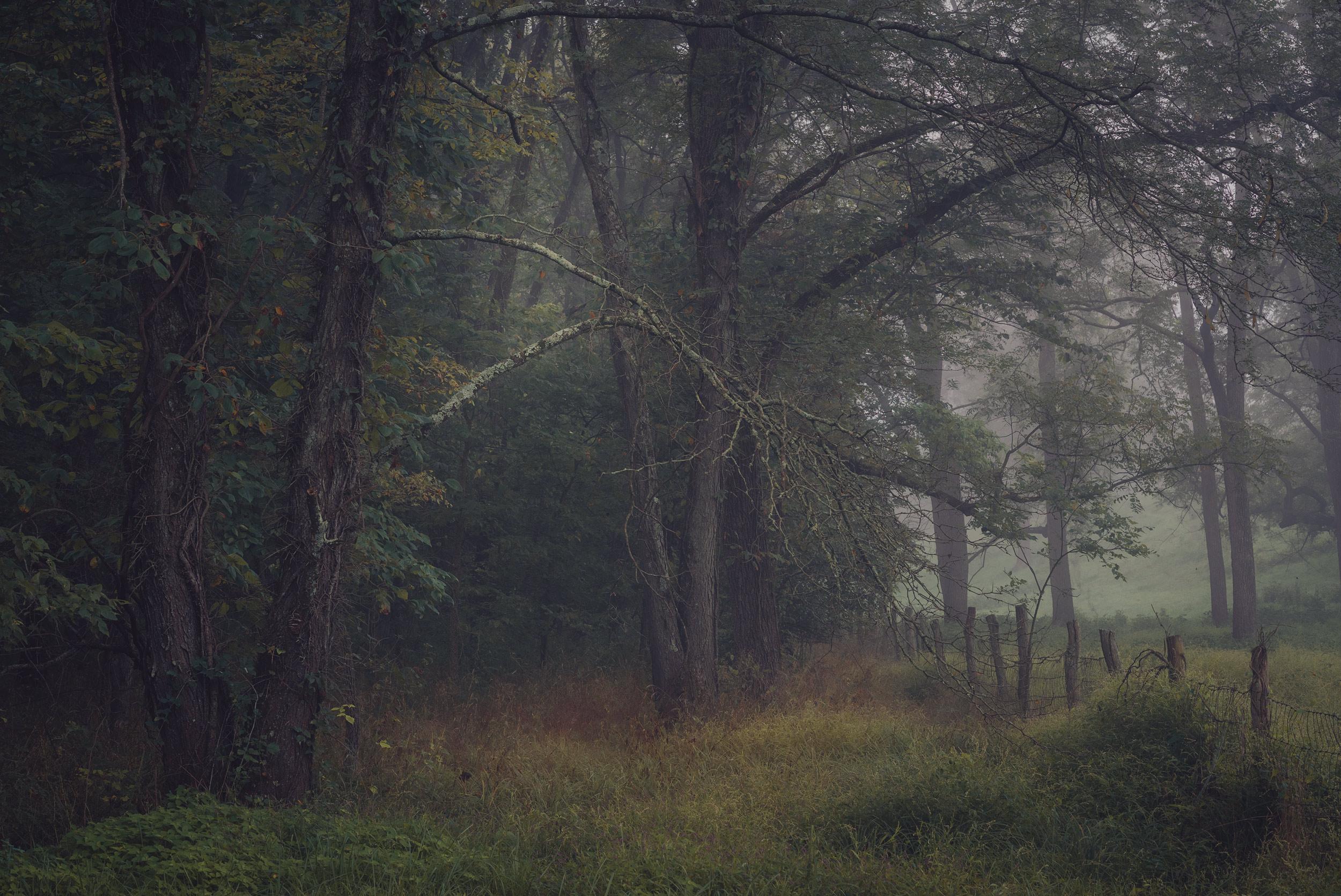 Midwest Landscape Photography