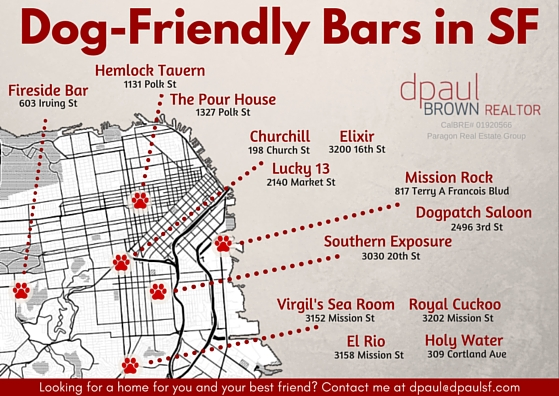 Dog-Friendly-Bars-in-SF.jpg