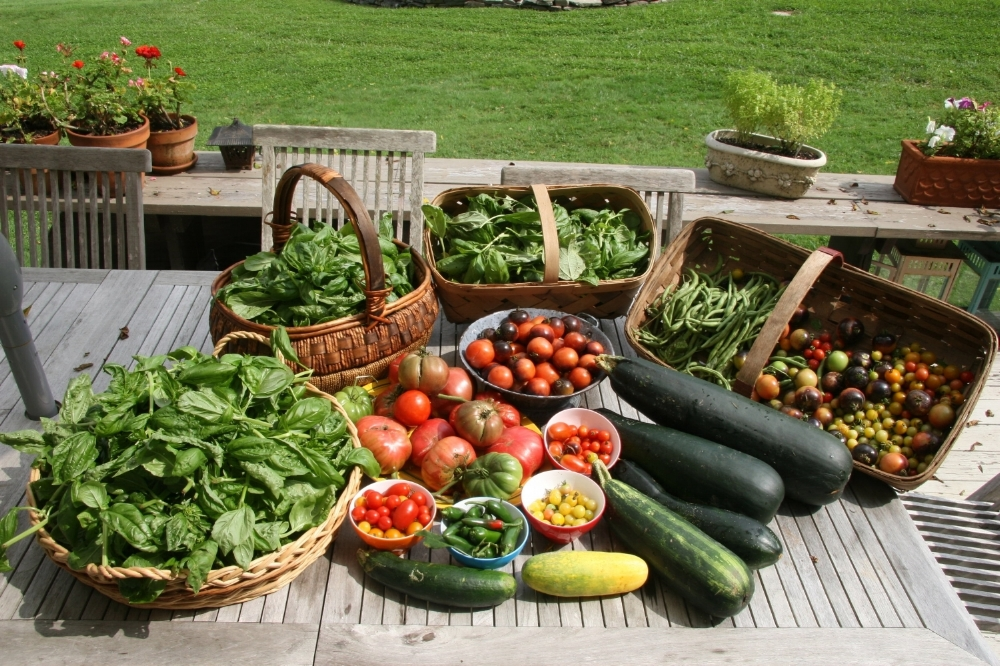 Much of our organic, locally sourced produce comes straight from the local farms of M's proprietors.