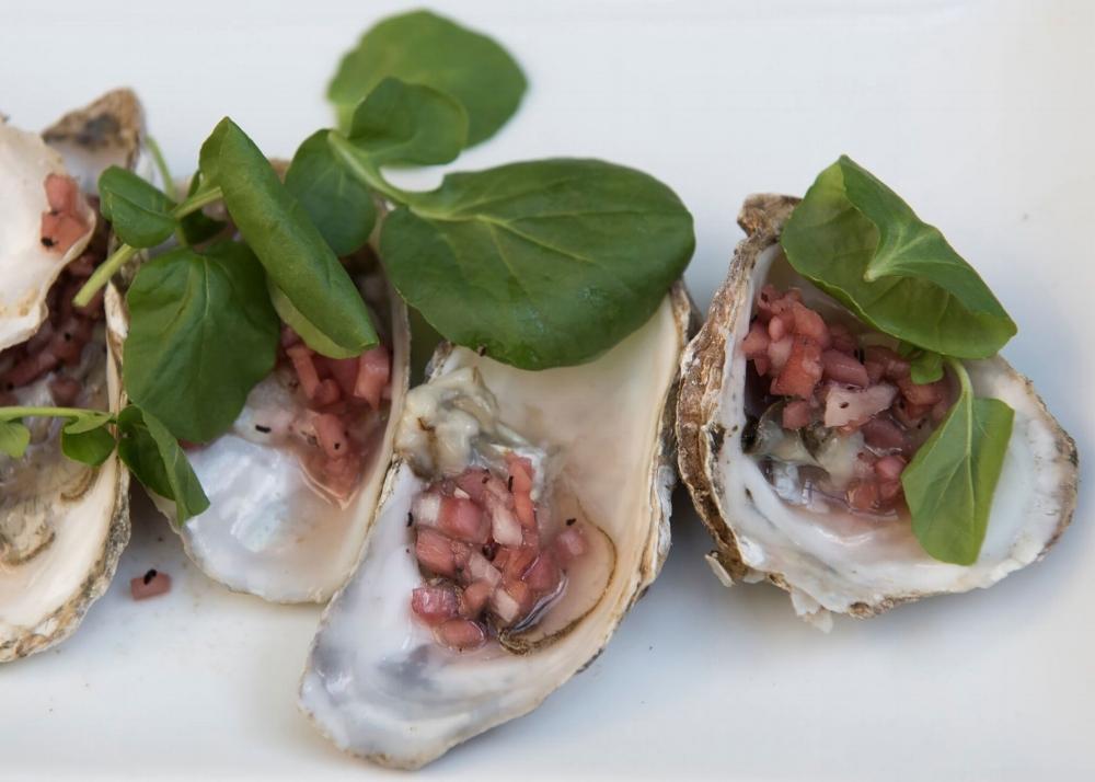 clams-on-the-half-shell_.jpg