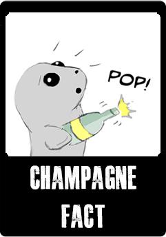 champagne-button.jpg