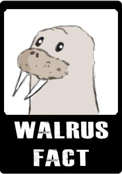 walrus-fact-button.jpg
