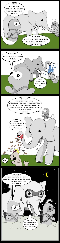 elephant-fact.jpg