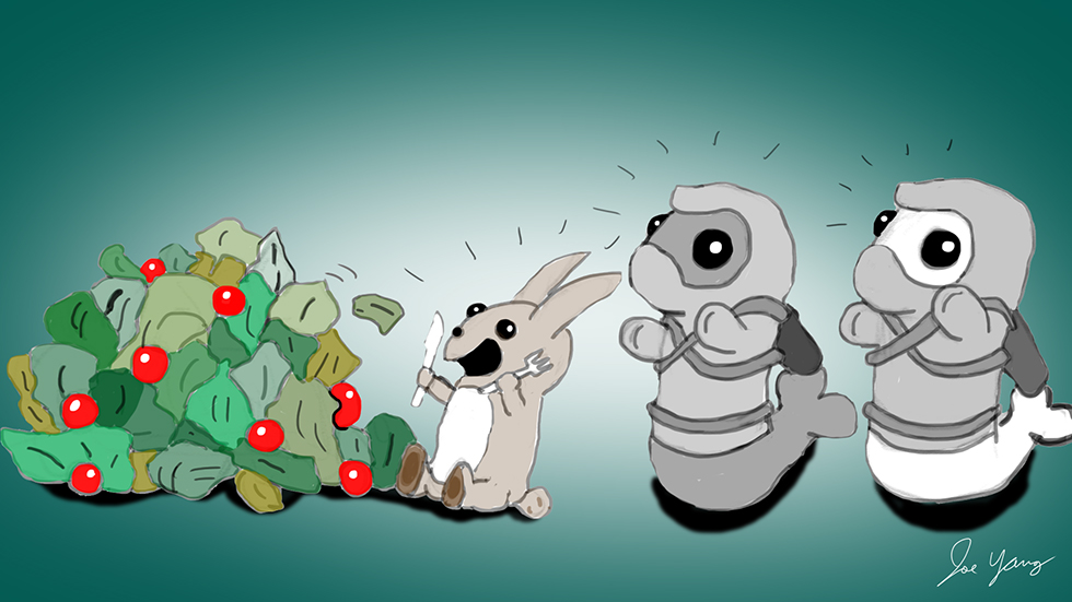 The Ninja Seals marvel at the rabbit's appetite for salad