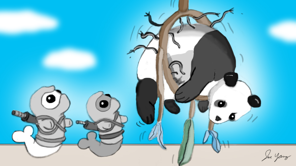 The Ninja Seals are confused as to how/why panda got stuck in a giant dreamcatcher