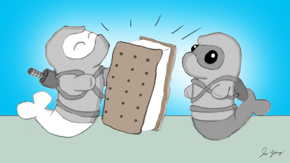 The Ninja Seals are pleased with their jumbo-sized ice cream sandwich