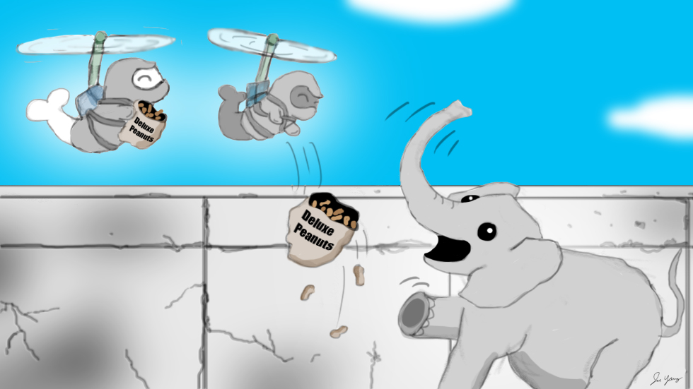 The daring Ninja Seals air-drop much needed supplies to their elephant friend!
