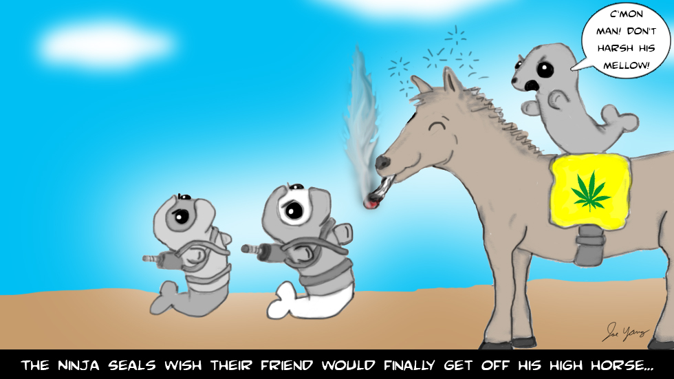 "The Ninja Seals wish their friend would finally get off his ""high horse"""