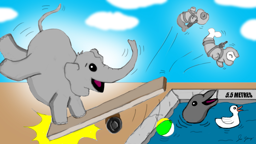 Whenever the Ninja Seals throw a pool party, Elephant is always invited!
