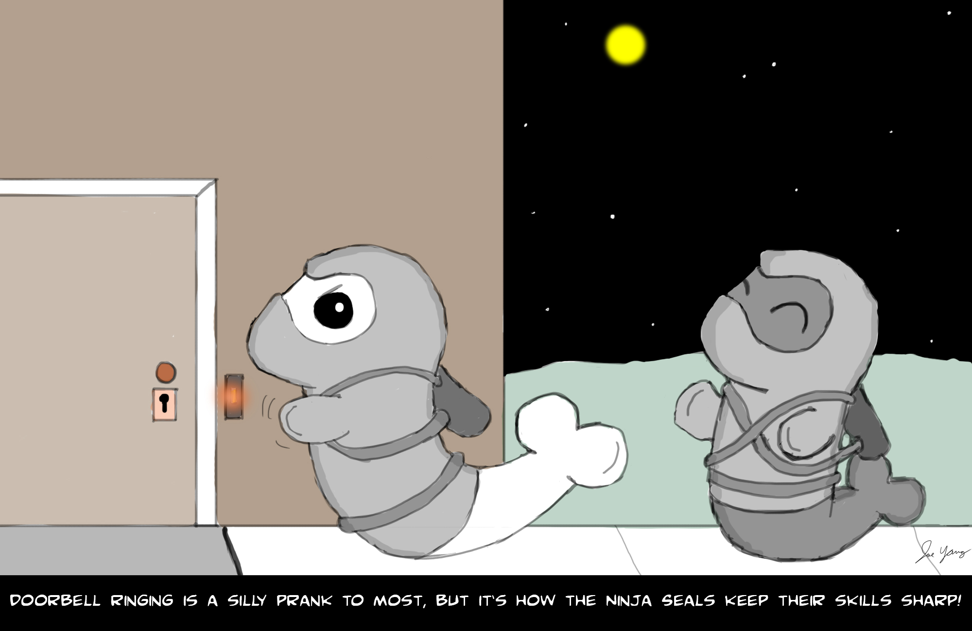 Doorbell ringing is a silly prank to most, but it's how the Ninja Seals keep their skills sharp!