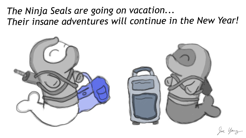Ninja Seals are on vacation - Their insane adventures will continue in the new year!