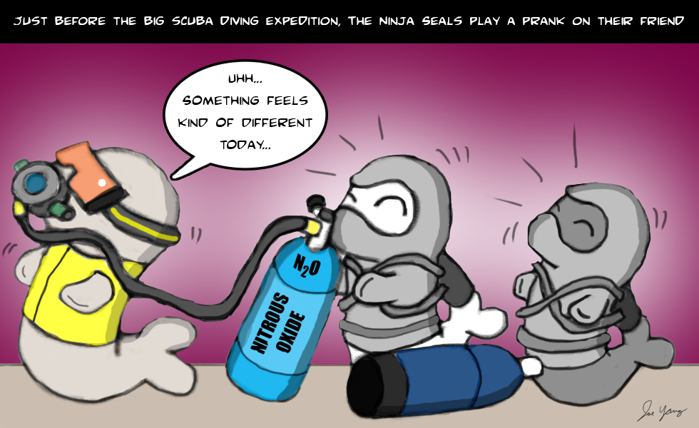 Just before the big scuba diving expedition, the Ninja Seals play a prank on their friend