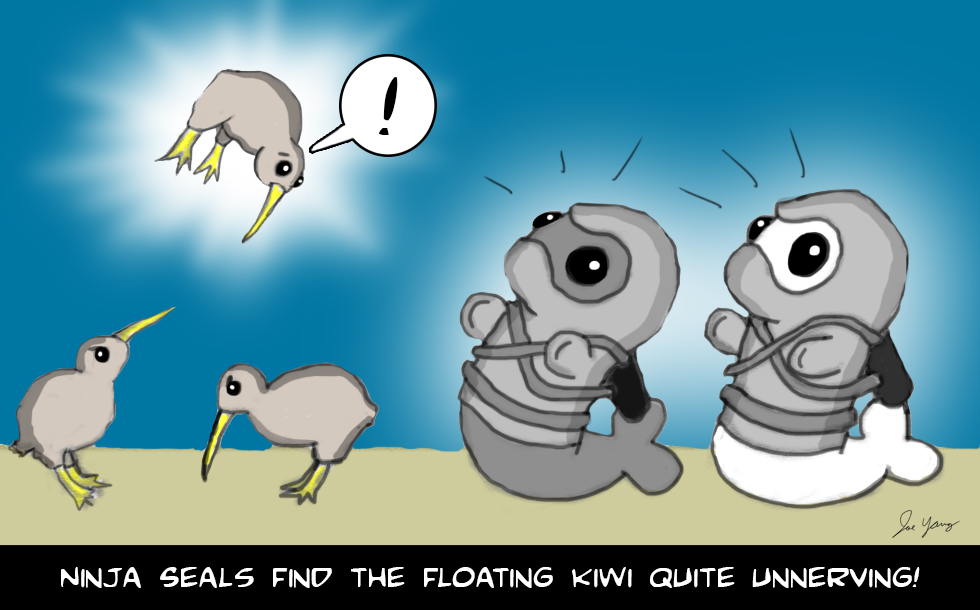 The Ninja Seals find the floating kiwi quite unnerving!