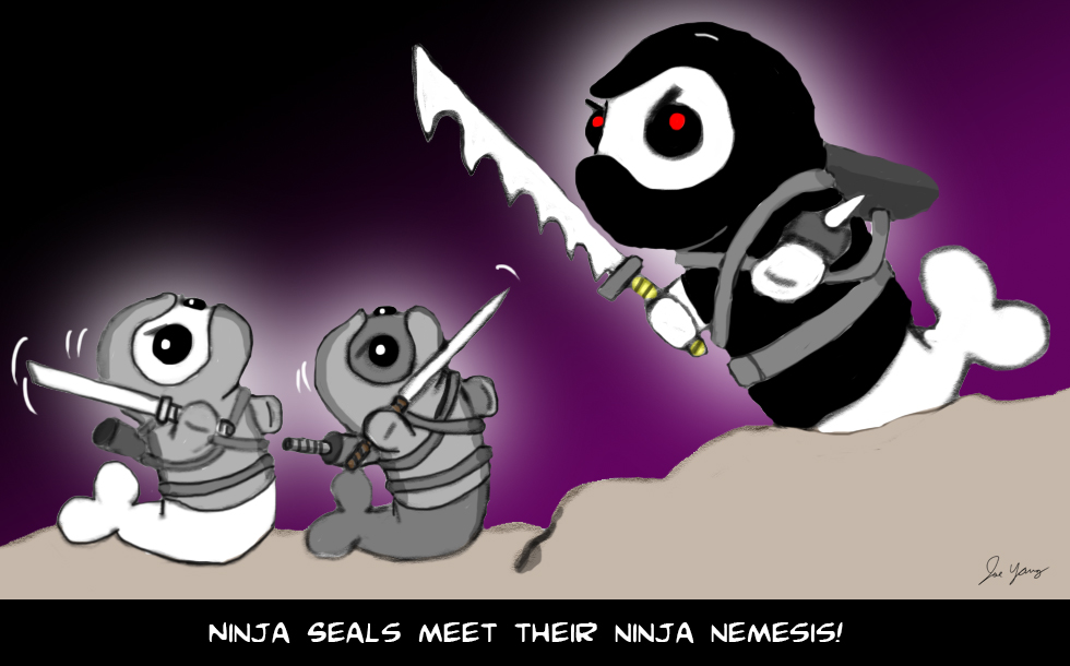The Ninja Seals meet their ninja nemesis!