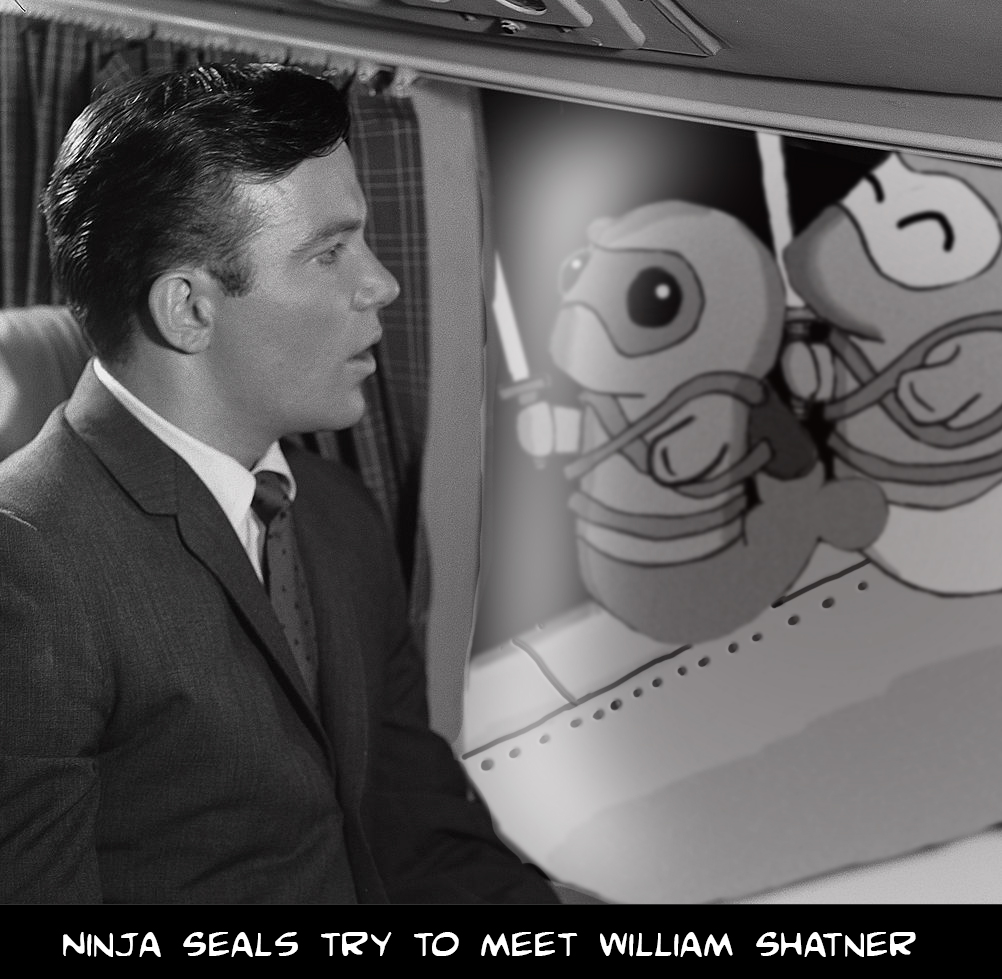 The Ninja Seals try to meet William Shatner