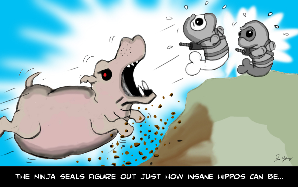 The Ninja Seals figure out just how insane hippos can be