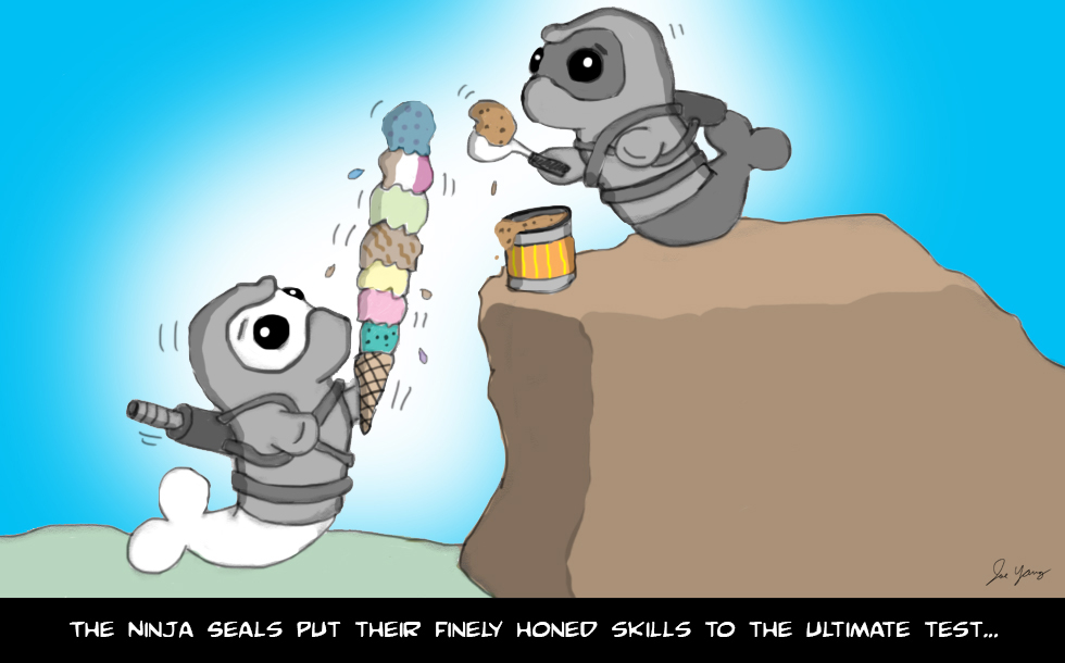 The Ninja Seals put their finely honed skills to the ultimate test...