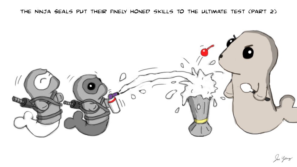The Ninja Seals put their finely honed skills to the ultimate test (part 2)