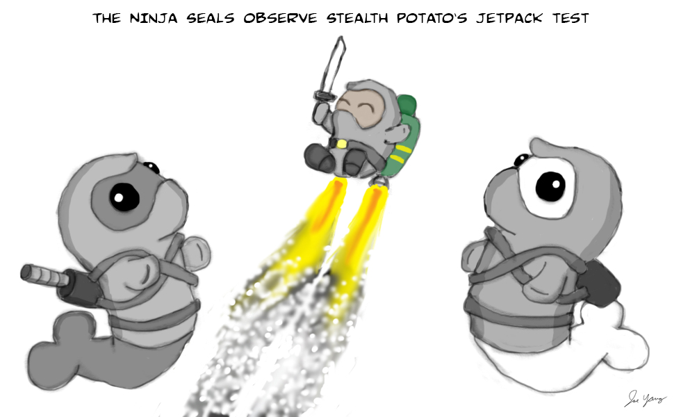 The Ninja Seals observe Stealth Potato's jetpack test