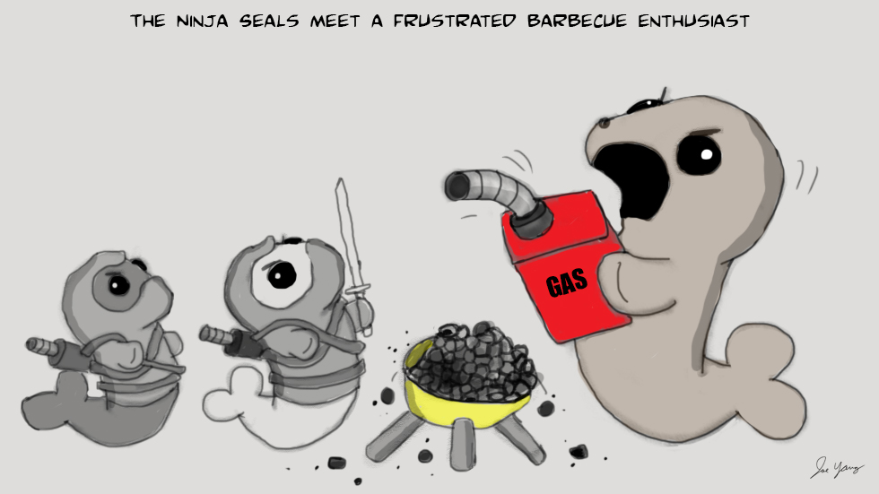 The Ninja Seals meet a frustrated barbecue enthusiast
