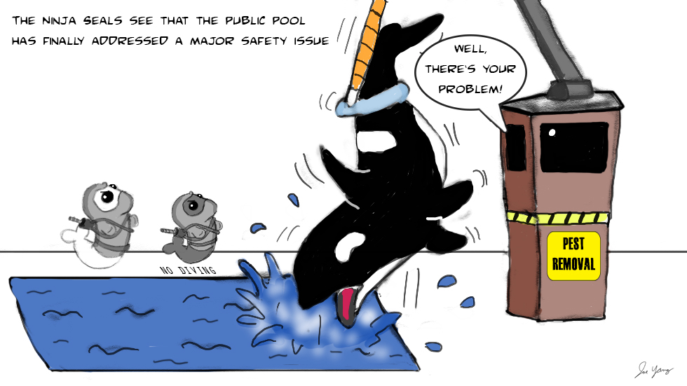 The Ninja Seals see that the public pool has finally addressed a major safety issue...