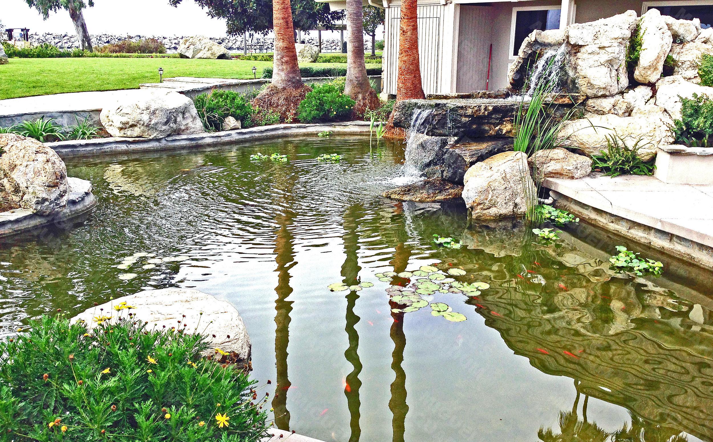 Pond Maintenance - Weekly, Bi-Weekly or Monthly