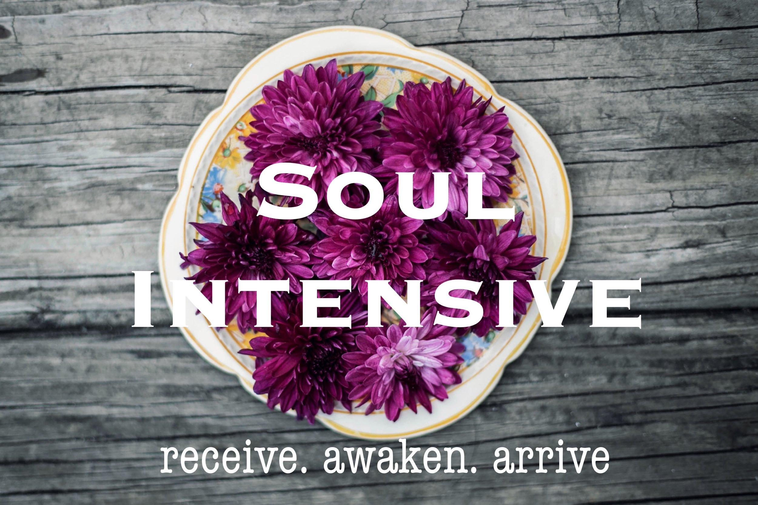 Soul Intensive