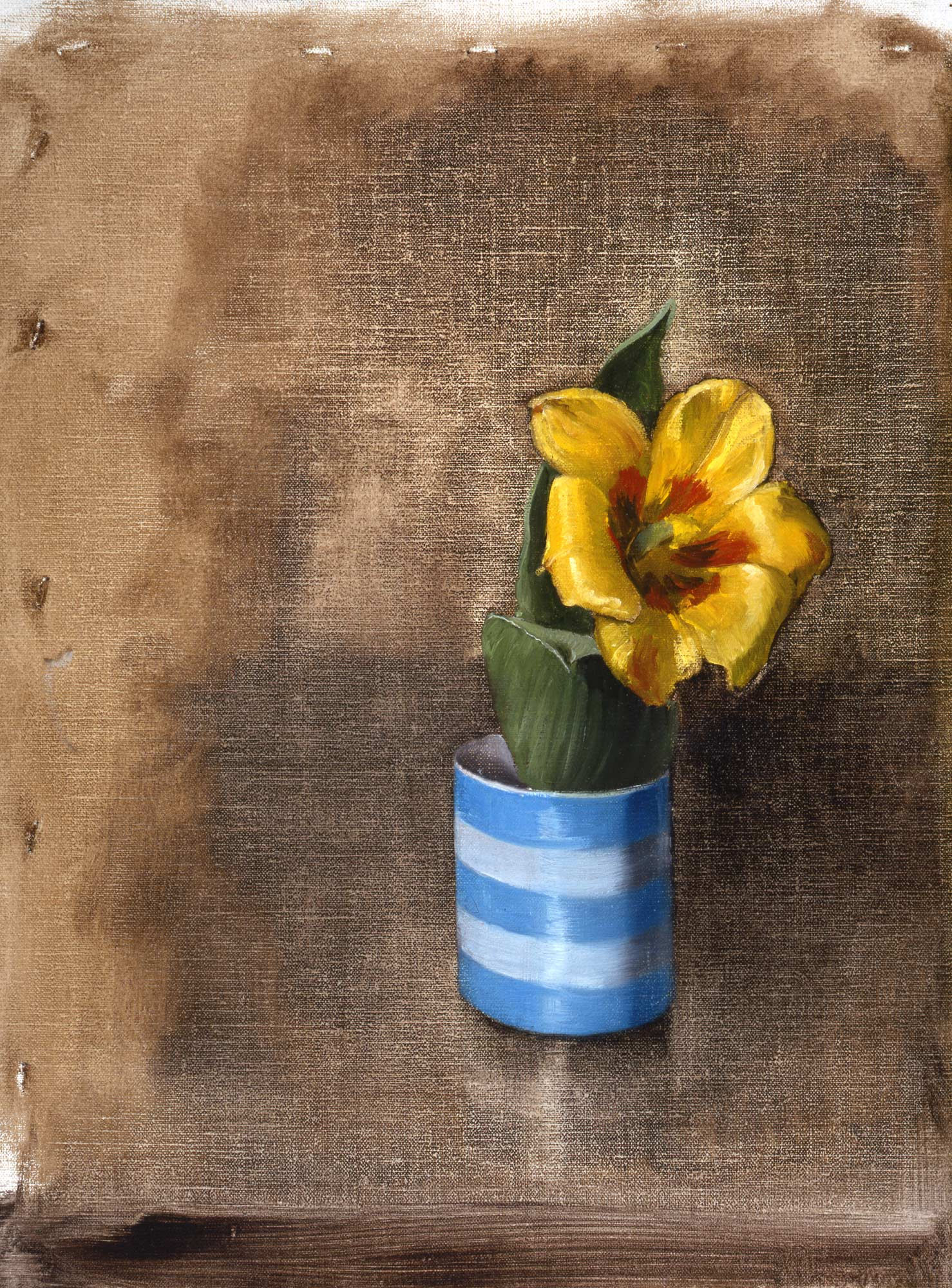 Study of a Tulip in a Cup