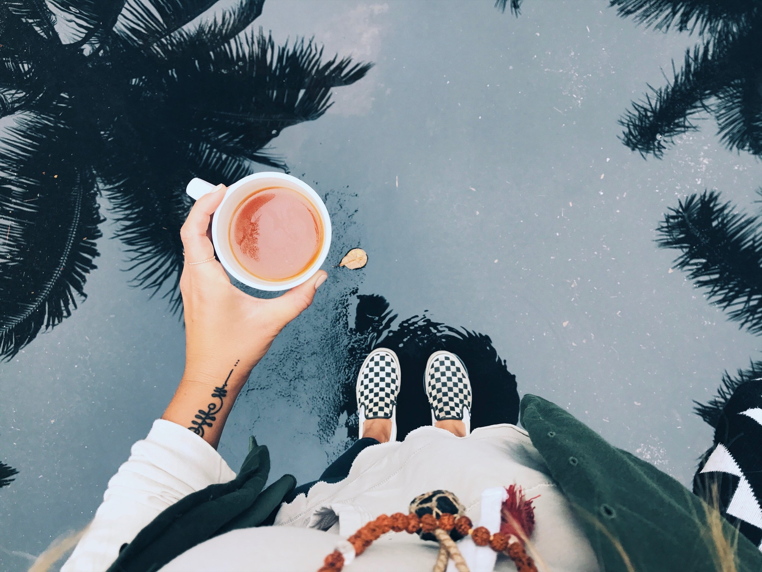 apolloconnectionco.sauceosofsky.tea.vans.jpg