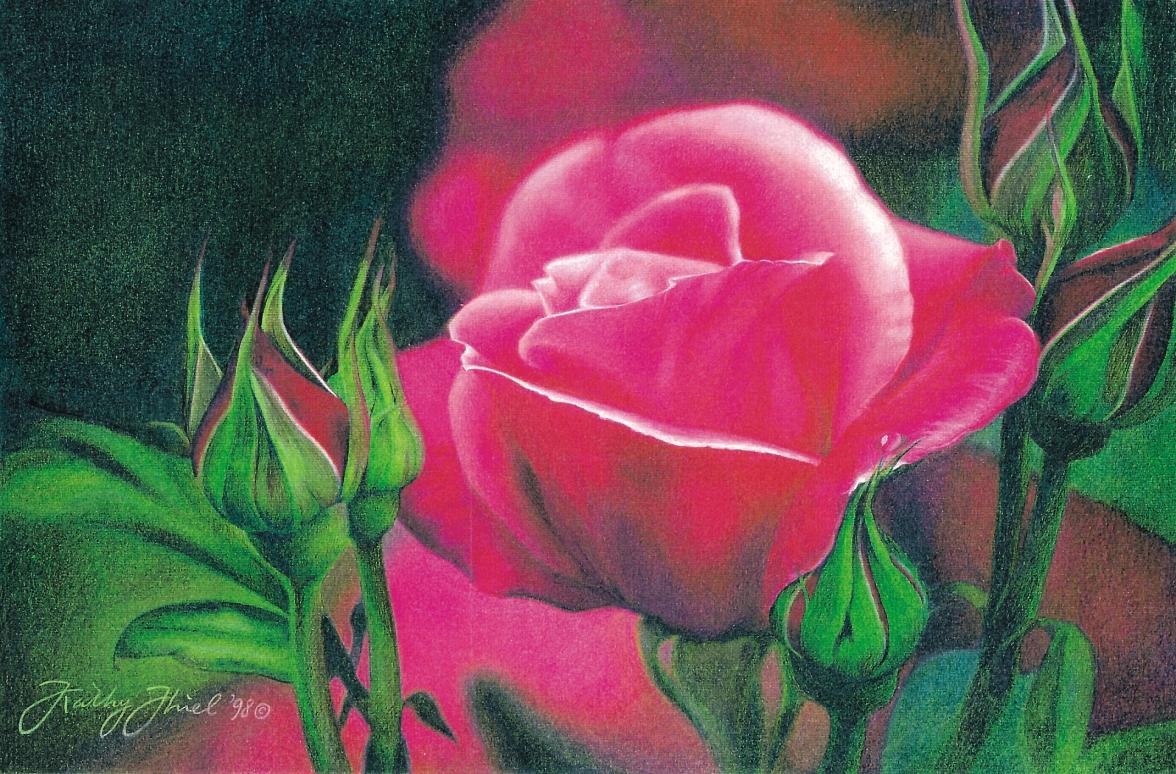 Romantic Rose.JPG
