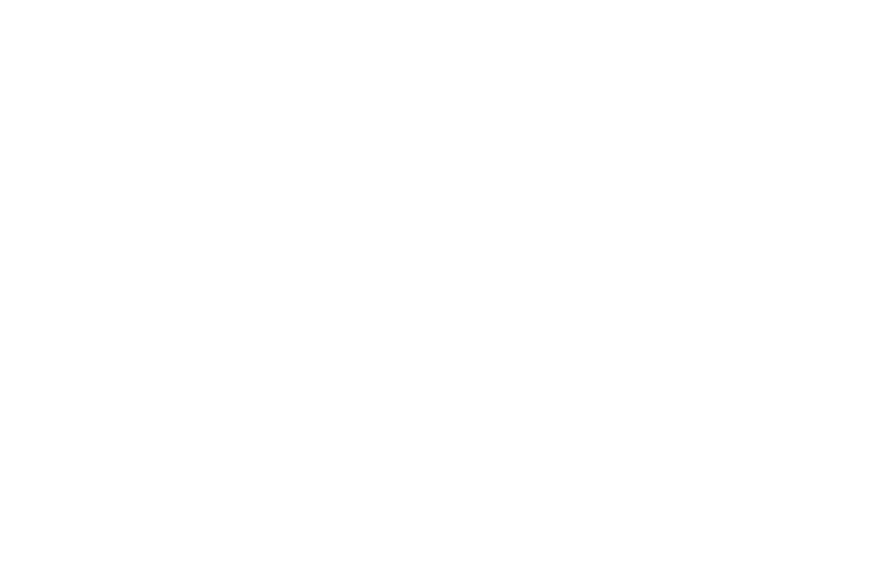 OFFICIAL SELECTION - The RSF Marthas Vineyard African American Film Festival - 2019.png