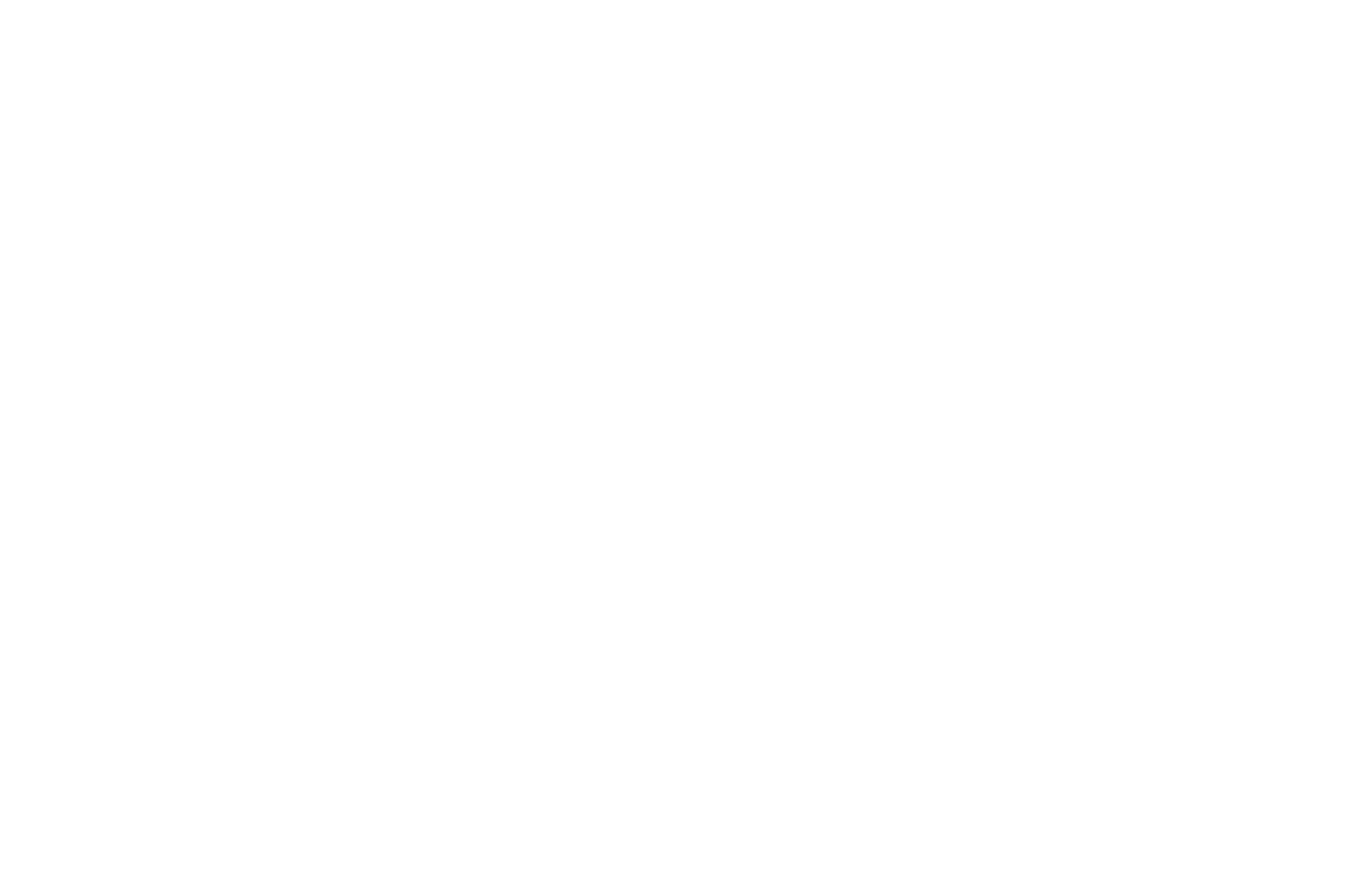 BEST SOCIAL AWARENESS - Las Vegas Black Film Festival - 2019.png