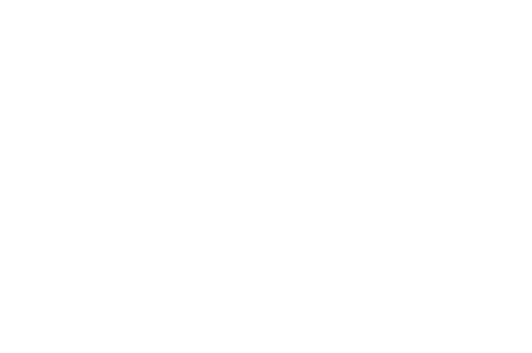 OFFICIAL SELECTION - LIIFE - The Long Island International Film Expo - 2019.png