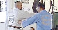 Hapkido Step 3.jpg