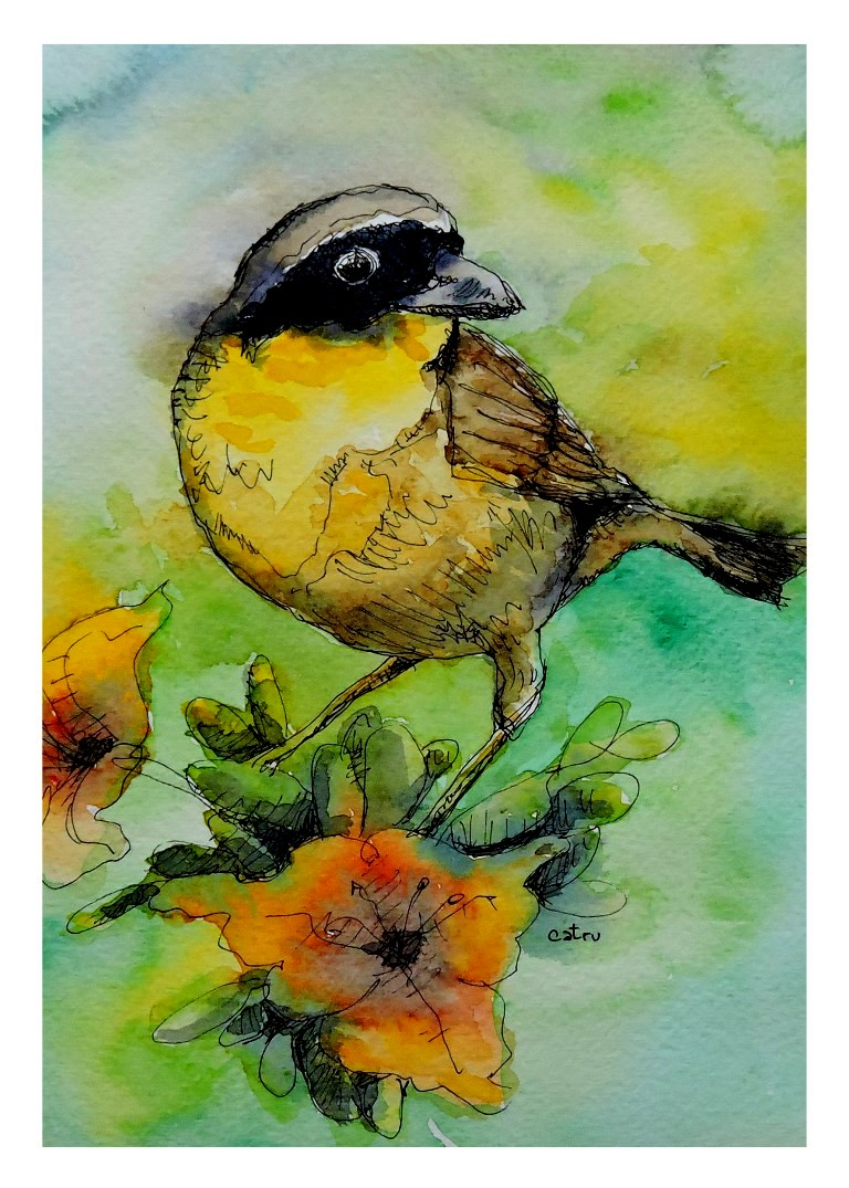 Prints 5x7_con borde blanco_Pajaro 1 (Medium).jpg